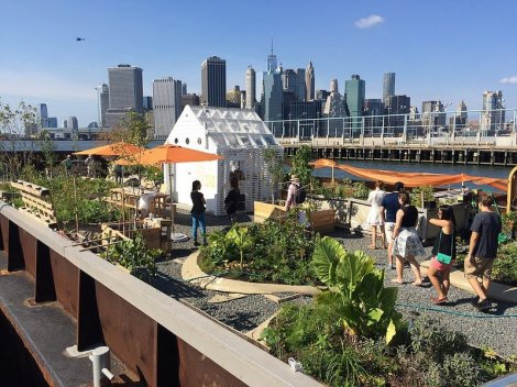 Swale-2017-Brooklyn-Bridge-Park-Floating-Food-Forest-Barge-Brooklyn-Army-Terminal-NYC